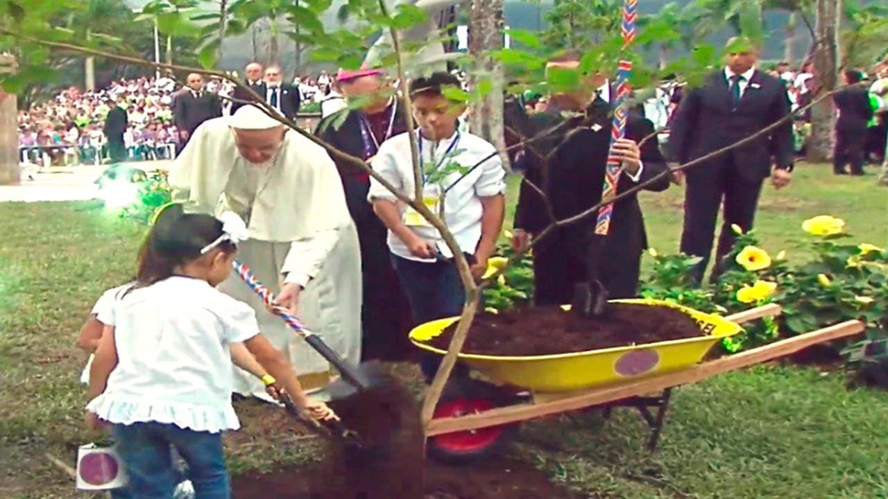 El Papa Francisco siembra un árbol como símbolo de paz