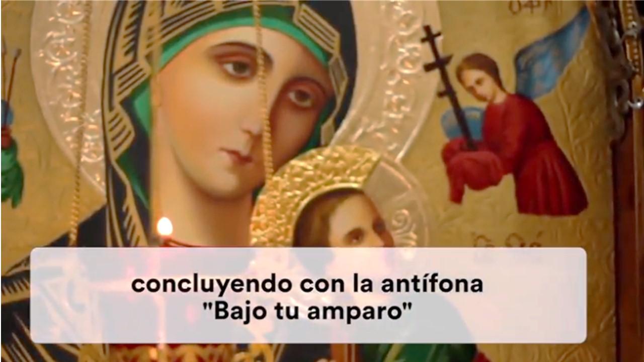 VIDEO #10 DEL PAPA || Campaña especial para rezar el Santo Rosario por la Iglesia